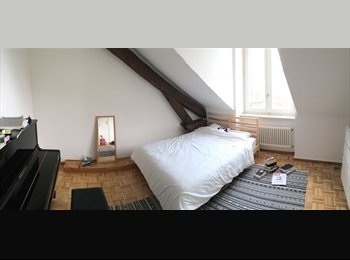 EasyWG CH - Room to Rent in spacious apartment  , Genève - 1500 CHF / Mois