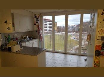 EasyWG CH - Chambre à louer dans une colocation de 4 personnes, Fribourg - 576 CHF / Mois