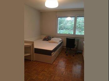 EasyWG CH - Un Havre de calme en ville !! - Lausanne, Lausanne - 1200 CHF / Mois