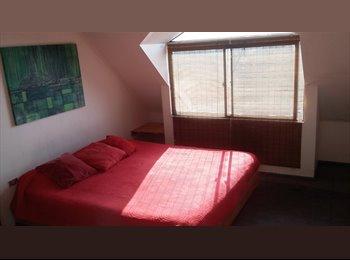 CompartoDepto CL - Gran habitación soleada con baño privado 20mts2, Valparaíso - CH$ 220.000 por mes