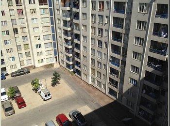 Habitacion Individual En Santiago Centro.
