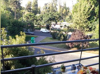Single room in great apt front forestal park