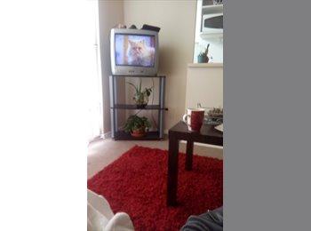 CompartoDepto CL - Arriendo habitacion, La Serena - CH$ 100 por mes