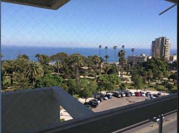 CompartoDepto CL - Viña del Mar Ocean View, Viña del Mar - CH$ 250.000 por mes