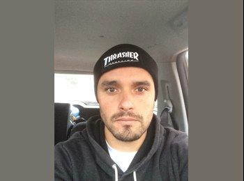 Pablo Andrés Zarate M. - 28 - Profesional
