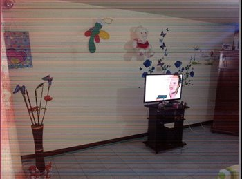 CompartoApto CO - arriendo habitacion para persona sola , Pereira - COP$230.000 por mes
