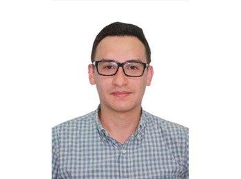 Fernando  - 29 - Profesional