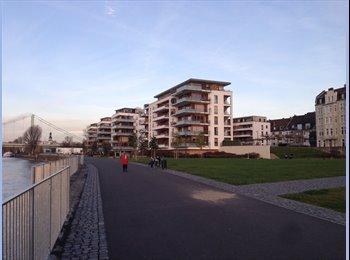 EasyWG DE - Helles 16m² Zimmer in 3er-WG am Rheinufer - Stammheim, Köln - 330 € pm