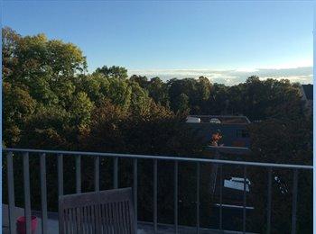 Über den Dächern Bogenhausens