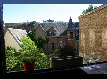 EasyKot EK - Mooie -studio 18M2 OP TOP LOCATIE - Sint-Jacob, Antwerpen-Anvers - € 435 p.m.