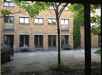 Studentroom Antwerpen / Studentenkamer Antwerpen/