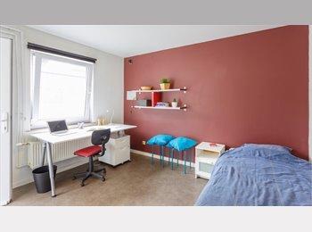 EasyKot EK - Volledig vernieuwd studentenhuis - Centrum, Hasselt - € 320 p.m.