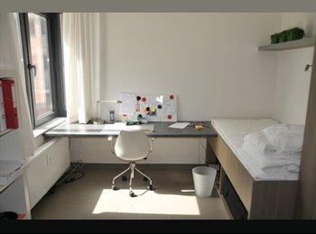 EasyKot EK - studiokamer  st maartenstraat (laatste kamer) - Centrum, Leuven-Louvain - € 365 p.m.