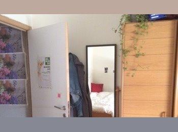 Een leuke kamer te huur