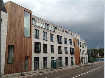 EasyKot EK - Kamers met individueel comfort - nieuwbouw - Centrum, Leuven-Louvain - € 435 p.m.