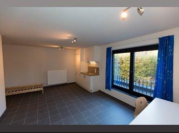 EasyKot EK - Splinter nieuw studentenhuis met ruime kamers in de beste straat van Geel centrum - Geel, Geel - € 350 p.m.
