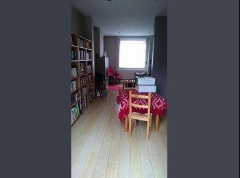 Grote kamer in gezellig en net huis zoekt bewoonster