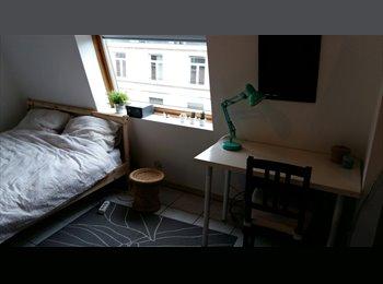 EasyKot EK - Tijdelijk kot/studio Brussel - Maasmechelen, Maasmechelen - € 390 p.m.