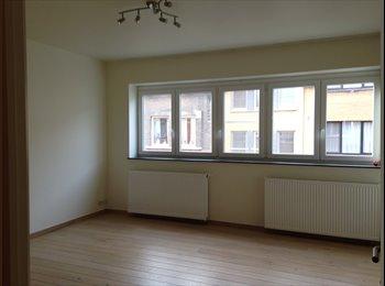 EasyKot EK - huge and sunny bedroom with private bathroom - Centrum, Gent-Gand - € 425 p.m.