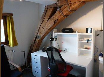 vernieuwde duplex kamer in hartje Gent