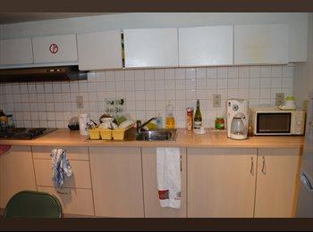 EasyKot EK - Gemeubelde kamer in statisch herenhuis, Antwerpen-Anvers - € 350 p.m.