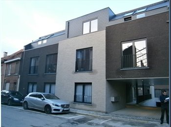 Opendeurdag - Tiensestraat 248/Windmolenveldstraat 30