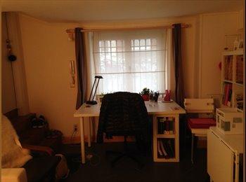 Charmante studio in hartje studenten-omgeving