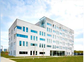 Campus  Nieuw - Zuid   -  Kamer type A