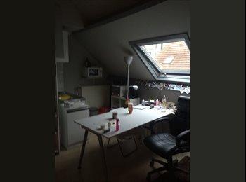 moderne gemeubelde studio van 27m2