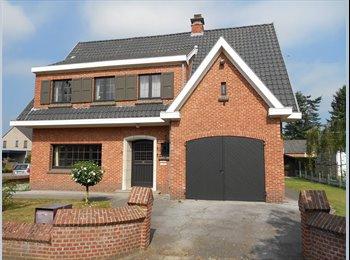 EasyKot EK - Friendly houseshare in Mol near Geel, Geel - € 380 p.m.