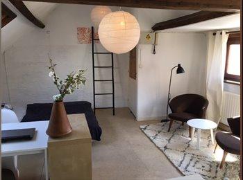 EasyKot EK - ruime zonnige zolderkamer aan het zuid, Gent-Gand - € 460 p.m.