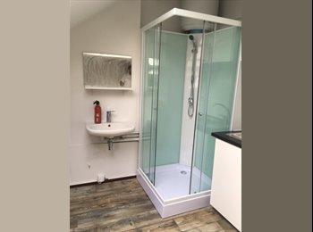 EasyKot EK - Ruime pas gerenoveerde kamer met eigen sanitair en kitchinette te huur, Leuven-Louvain - € 345 p.m.