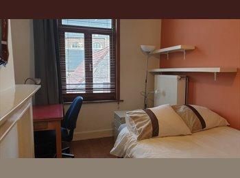 EasyKot EK - furnished room in comfortable 3 bedroom apartment,, Gent-Gand - € 375 p.m.