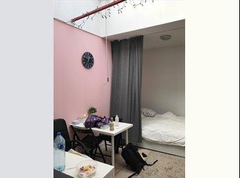 EasyKot EK - Heel rustige Studio met veel lichtinval, Gent-Gand - € 384 p.m.