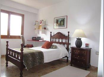 EasyPiso ES - Luminosa y confortable suite en el centro de Palma, Palma de Mallorca - 430 € por mes