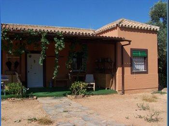 Habitación en chalé 15 min. de Sevilla Ctra. Cádiz