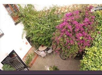 Preciosa habitación en pleno centro de Córdoba