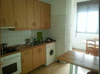 EasyPiso ES - Habitacion doble, luminosa y con techos altos - Universidad San Francisco, Zaragoza - 230 € por mes