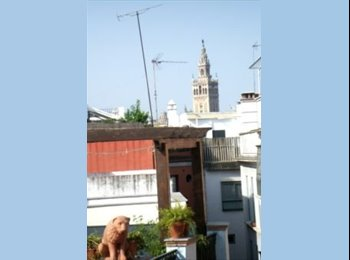 HABITACIONES CHICAS PISO COMPARTIDO CENTRO SEVILLA