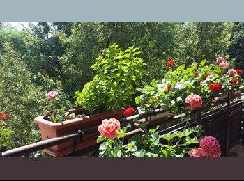 Agosto Habitación verano por días, semanas,quicena