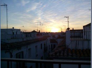Buscamos compañero de piso en Córdoba