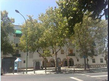 EasyPiso ES - piso Avda Reina Mercedes 10 - La Palmera - Los Bermejales, Sevilla - 210 € por mes