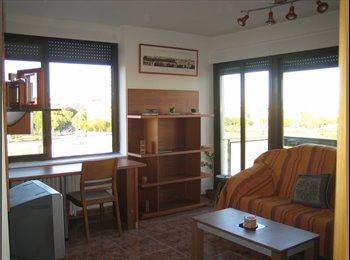 Alquilo habitación/piso a estudiantes