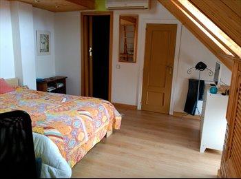 EasyPiso ES - Magnifica y gran habitación en duplex en las Rozas de Madrid - Zona Noroeste, Madrid - 340 € por mes