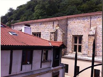 CENTRO-P.  VIEJA- Habitaciones muy grandes c. balcon,...