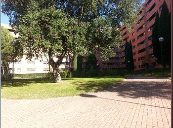 Magnífica habitación en la Ciudad Universitaria