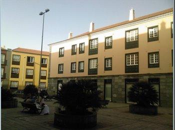 Habitación individual - 200€ - Centro de La Laguna - Chica...