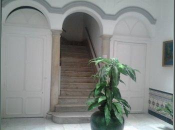 Mágnifica habitación en el centro de Cádiz