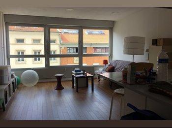 loue 1 pièce (20 m2) dans F5 de 140 m2 (salon-cuisine 30m2)