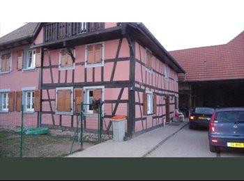 Appartager FR - recherche un ou une colocataire - Brumath, Strasbourg - 350 € /Mois